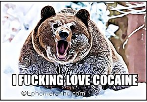 cocaine-bear-meme (1)